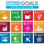 SDGs(Sustainable Development Goals)に関する一考